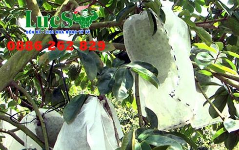 Túi Lưới Bao Trái Cây
