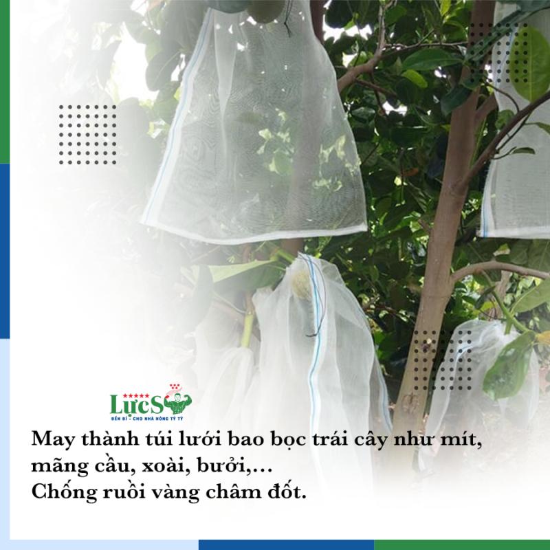 Lưới Bao Cây Ăn Trái – Chắn Côn Trùng Và Sâu Bọ Tấn Công
